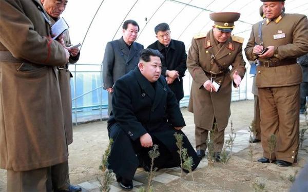 Những hình ảnh mới và lạ về Kim Jong-un