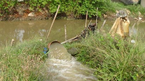 Nước về ĐBSCL theo quy luật tự nhiên