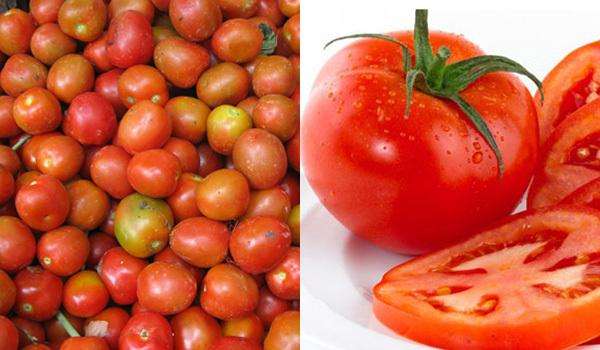 Rau ngậm hóa chất, Thực phẩm sạch, Thực phẩm chứa hóa chất