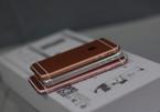 iPhone SE dễ bị bẻ cong hơn iPhone 6s và 6s Plus