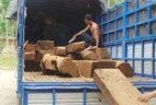 Xe chở gỗ quý 'qua mặt' nhiều trạm kiểm lâm