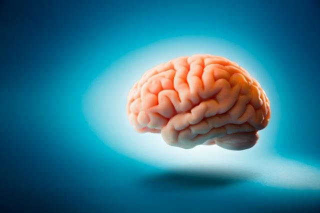 động kinh, bộ não nhân tạo