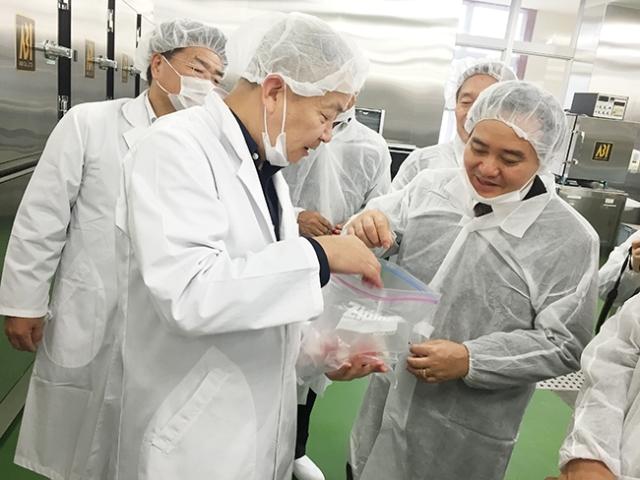 Bộ trưởng Phùng Xuân Nhạ, Bộ trưởng GD-ĐT, đổi mới giáo dục