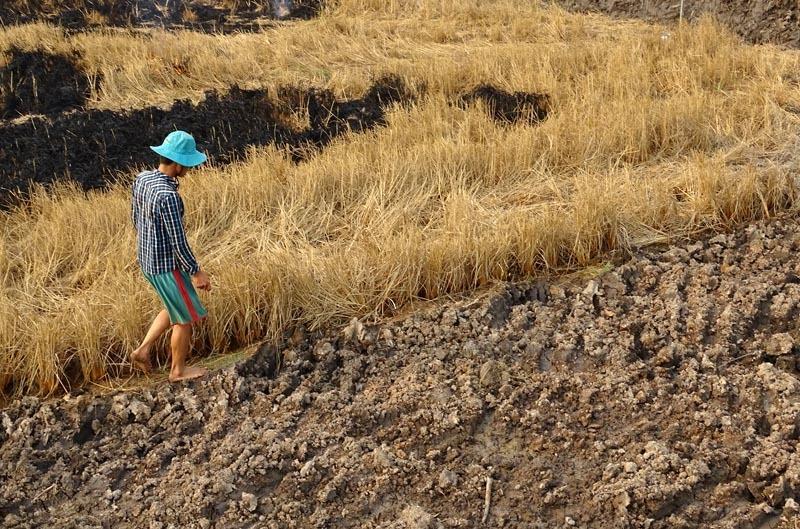 WB đột ngột giảm dự báo tăng trưởng Việt Nam xuống 6,2%