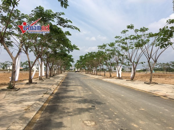 dự án nhà phố Citibella 2, dự án Melosa Garden, dự án Him Lam Phú Đông, khu đô thị Cát Tường Phú Nguyên