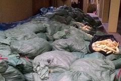 Phát hiện 20 tấn măng tươi ủ lưu huỳnh cực độc