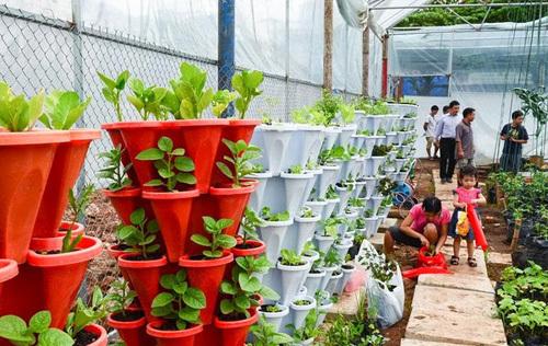 4 loại tháp rau lý tưởng để nhà chật đến mấy vẫn trồng đủ rau sạch để ăn