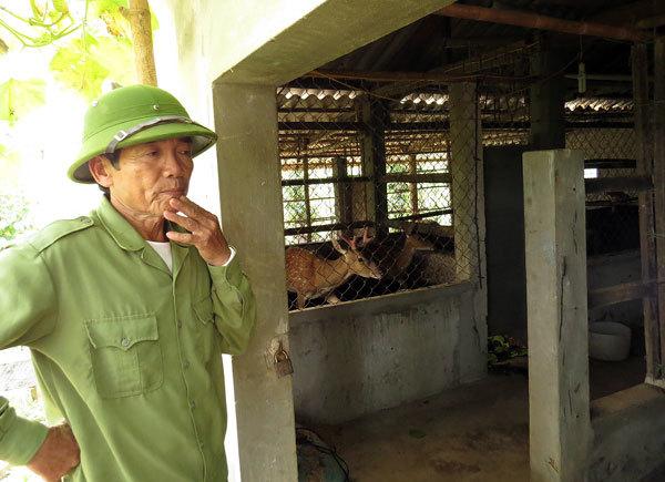 'Tui sợ nghèo', lão nông quyết thành tỷ phú