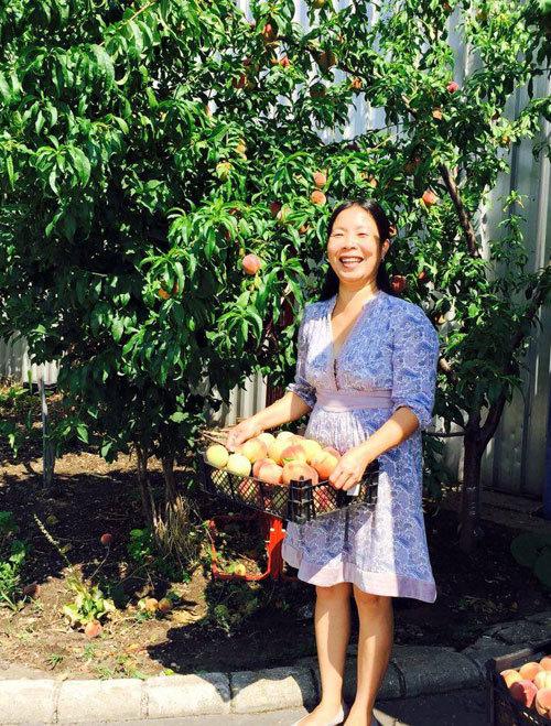 Vườn rau, quả cực 'đã mắt' của các mẹ Việt ở trời Tây