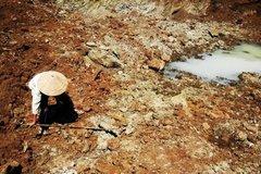 Thiệt hại gần 5.200 tỷ đồng, hạn mặn còn lan rộng