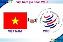 Việt Nam không tận dụng được cơ hội WTO?