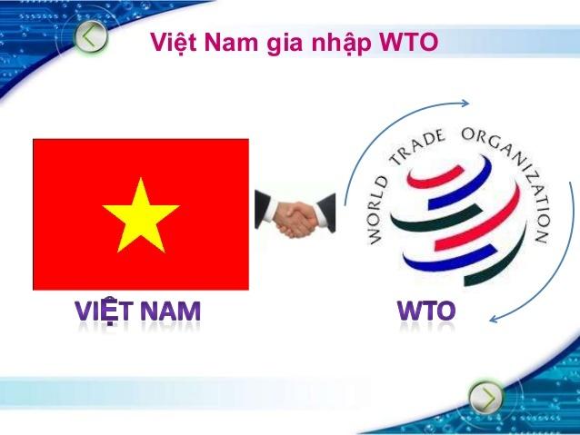 gia nhập WTO, thể chế, chính sách, môi trường kinh doanh, hội nhập kinh tế, đổi mới, cải cách.