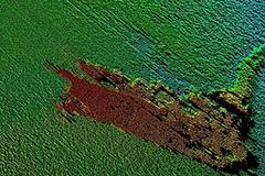 Tâm điểm CN: Kết quả bất ngờ cuộc săn lùng quái vật Loch Ness