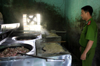 Đà Nẵng: Rùng mình hàng tạ mỡ bẩn sắp tuồn ra chợ