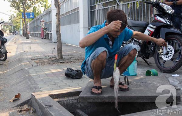 Người Sài Gòn ngồi vỉa hè, cạy nắp cống để... câu, bắt được cá trê 20kg
