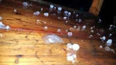 Giông lốc, mưa đá tấn công Lào Cai, Quảng Ninh