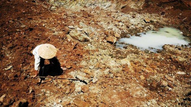 Hạn mặn gây thiệt hại 5.572 tỷ đồng