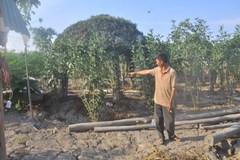 UBND huyện Bình Chánh nói phạt vụ chòi vịt là đúng luật
