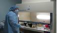 Bí mật động trời giữa bố và con trai tại phòng xét nghiệm ÁDN