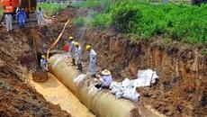 Nước sông Đà: Xinxing chưa chịu gửi mẫu gang chứng minh sạch