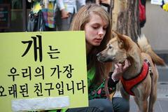 Dân Hàn ngậm ngùi cai thịt chó