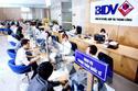 BIDV giảm lãi suất vay vốn SX kinh doanh