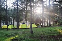 Đà Lạt hết phòng nghỉ, du khách đi tour cắm trại qua đêm
