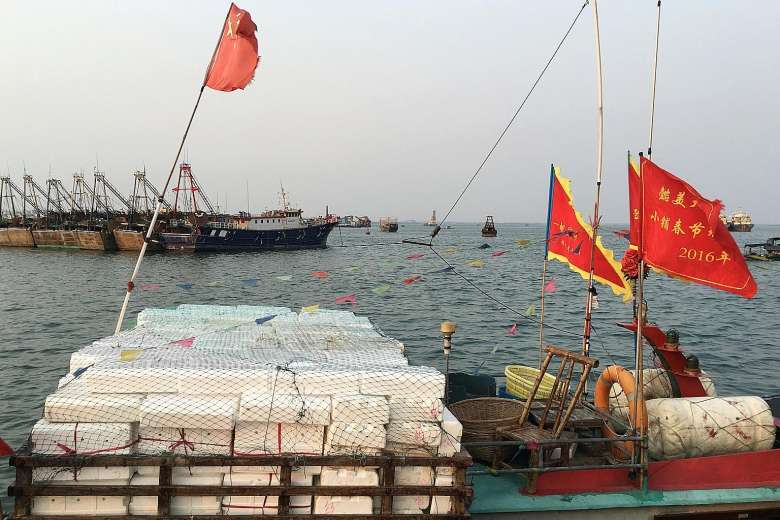 Tàu cá TQ mang vũ khí ra Biển Đông