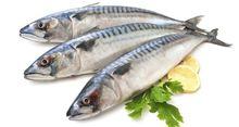 5 dấu hiệu nhận biết cá sạch
