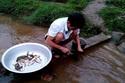 Giáo viên vùng cao lội suối bắt cá cải thiện bữa ăn