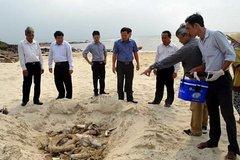 Cấp bách ứng phó hải sản chết bất thường