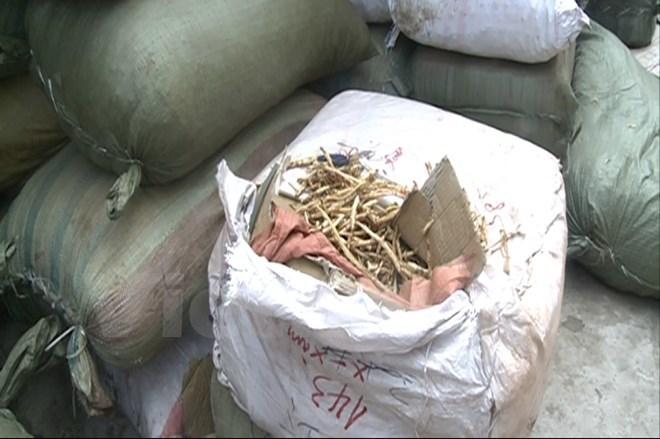 Bắt gần 10 tấn nguyên liệu thuốc bắc nhập lậu