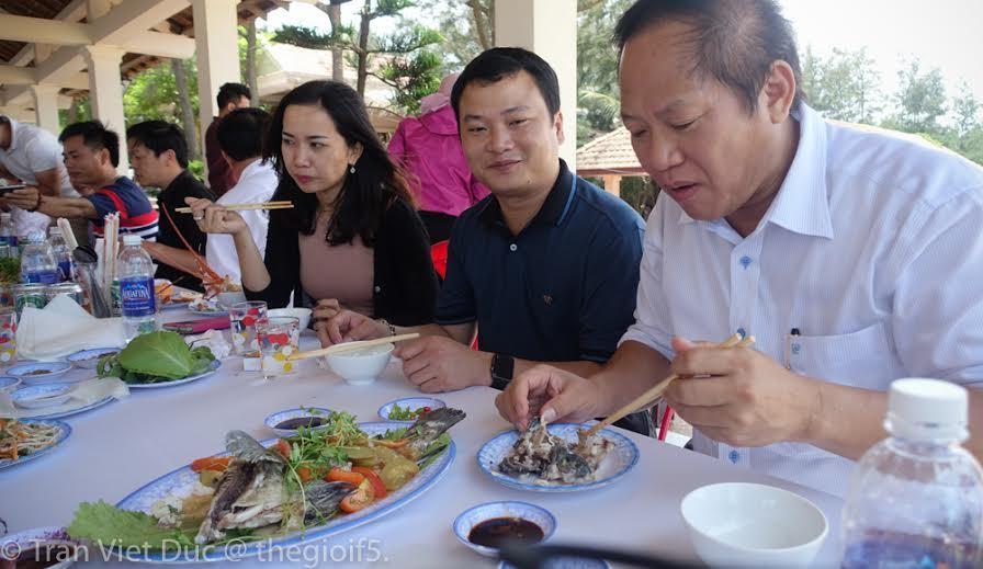 cá chết hàng loạt biển miền Trung