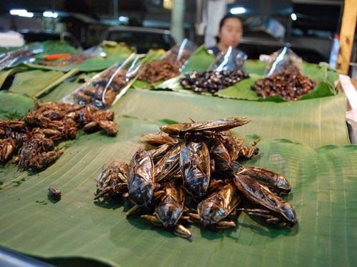 Món ăn lạ, Đặc sản cá nóc, Ẩm thực Nhật Bản, Ẩm thực Thái Lan