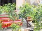 Vụ cháy nhà ở Nghệ An, nạn nhân thứ 4 tử vong