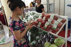 6 tháng, Bộ NN-PTNT tìm ra 2 hàng rau sạch ở Hà Nội