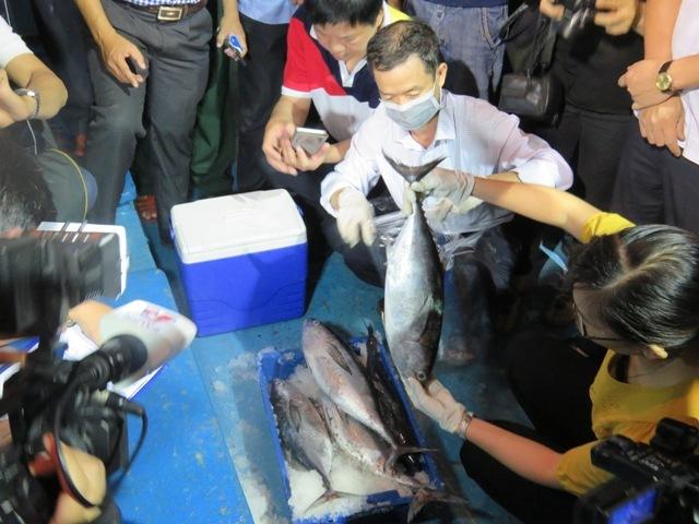 Cá chuẩn sạch bày bán khắp nơi