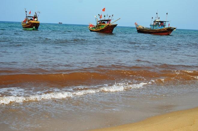 vệt nước đỏ biển Quảng Bình, thủy triều đỏ, cá chết biển miền Trung