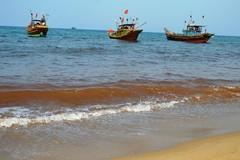 Vệt nước lạ mầu ở Quảng Bình không phải thủy triều đỏ