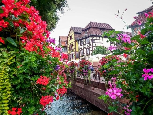 Những căn nhà tuyệt đẹp phủ đầy hoa khắp lối đi
