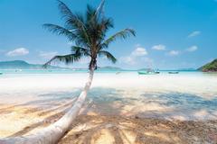 Top 5 bãi biển ở Việt Nam luôn hấp dẫn trong mùa du lịch hè
