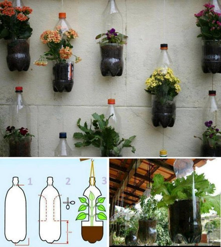 Thiết kế vườn treo từ... vỏ chai nhựa