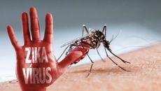 Một phụ nữ Hàn Quốc nhiễm Zika sau khi rời Việt Nam