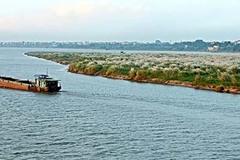 Bản chất dự án là khai thác khoáng sản sông Hồng?