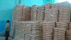 Kho bột mì hơn 100 tấn ở Sài Gòn hết hạn sử dụng