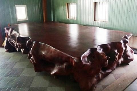 """Choáng trước bộ ngựa """"siêu khủng"""" tiền tỷ của đại gia Hà Tĩnh"""