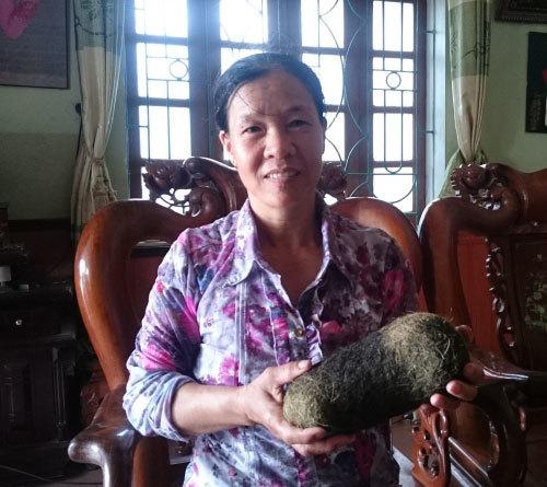Phát hiện thêm vật nghi cát lợn giá hàng chục tỷ đồng ở Hà Nam
