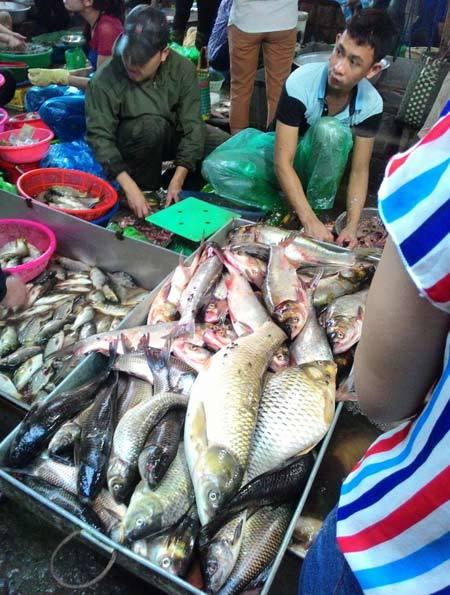 Tấp nập khách 'săn' cá ươn giá rẻ tại chợ thực phẩm Hà Nội