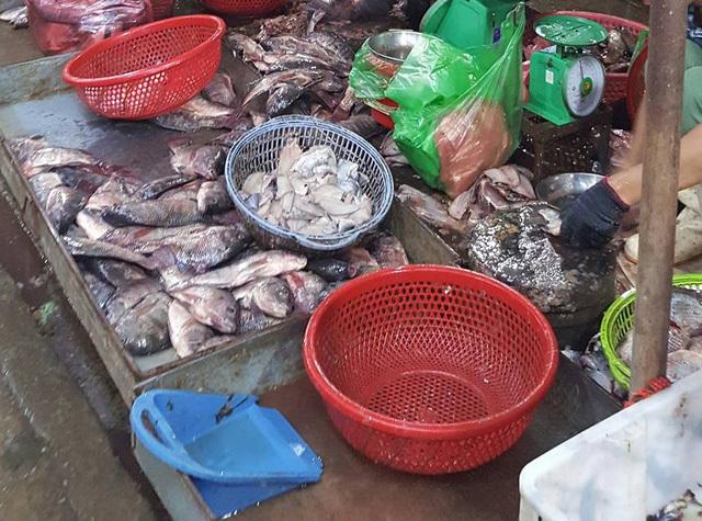 Hàng tấn cá ươn 'leo' lên... bàn nhậu