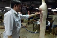 TPHCM: 623 con heo bơm nước sắp mổ thịt bị chặn bắt